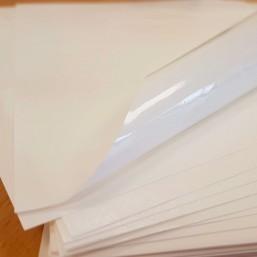 Oryginalny Papier Camembert